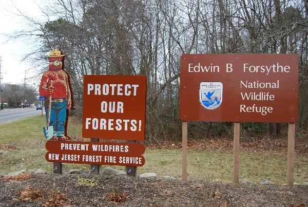 Edwin B Forsythe Smokey Bear NJ