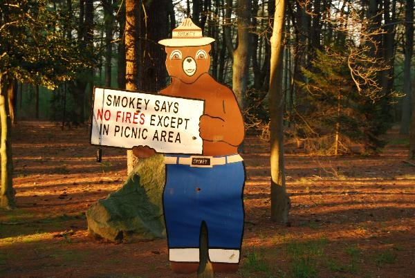 Ocean County Park Smokey, Lakewood, NJ