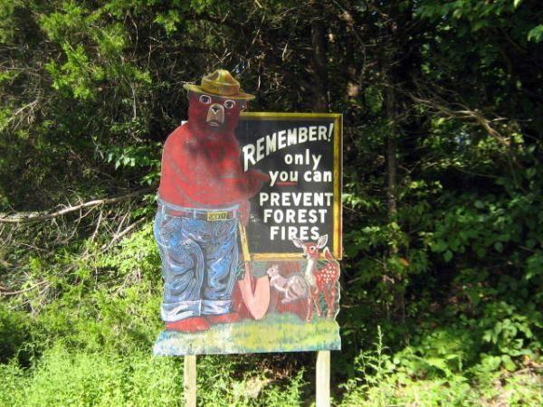 Shawnee National Forest, Glen O Jones area